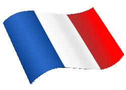 Hivatalos francia fordítás